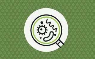 11 tips to avoid cross contamination