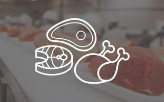 Vis, vlees en gevogelte